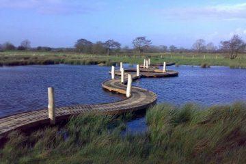 Curving boardwalk over marshland