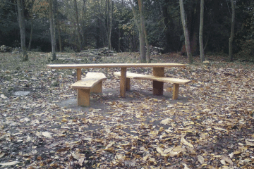All Ability Picnic Table Bench installed in a woodand