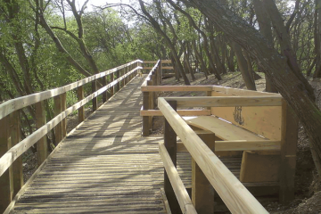 Passing place on wooden boardwalk through woodland