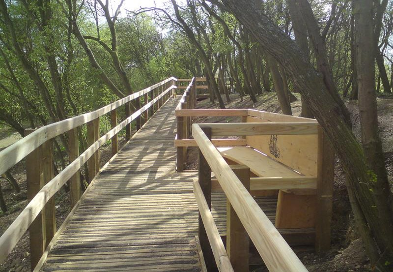 Sloping boardwalk with passing place