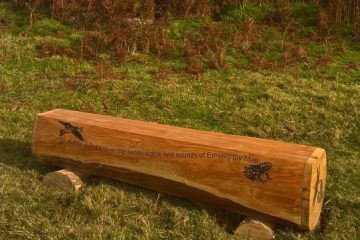 tree trunk bench seat with wildlife etching