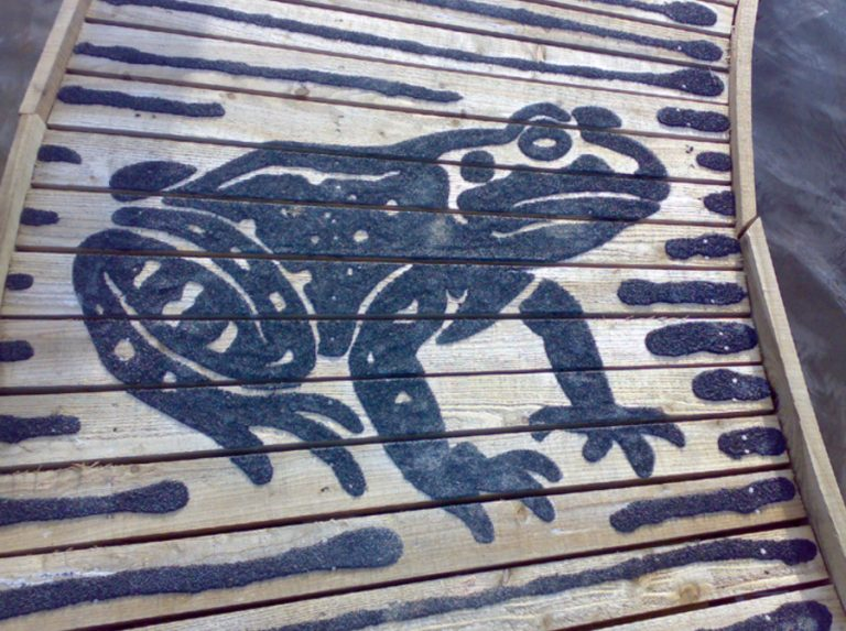 image of frog on decking