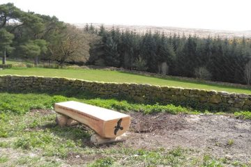 carved treetrunk bench overlooking Bellever Dartmoor