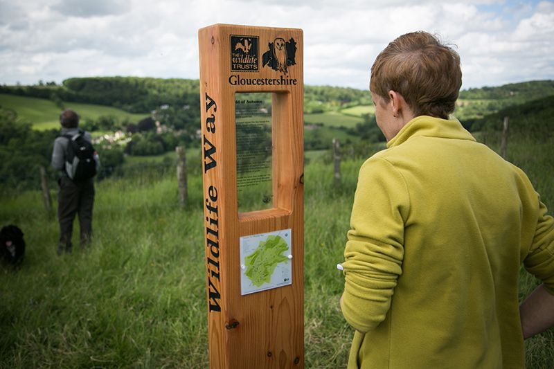 Lady reading a Gloucestershire Wildlife information post