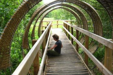 Woven willow tunnel over raised boardwalk