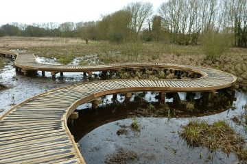 Curved boardwalk over marshland