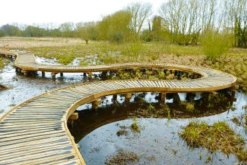 curved wooden boardwalk over marsh land