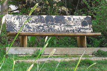 wooden viewpoint bench in front of trees