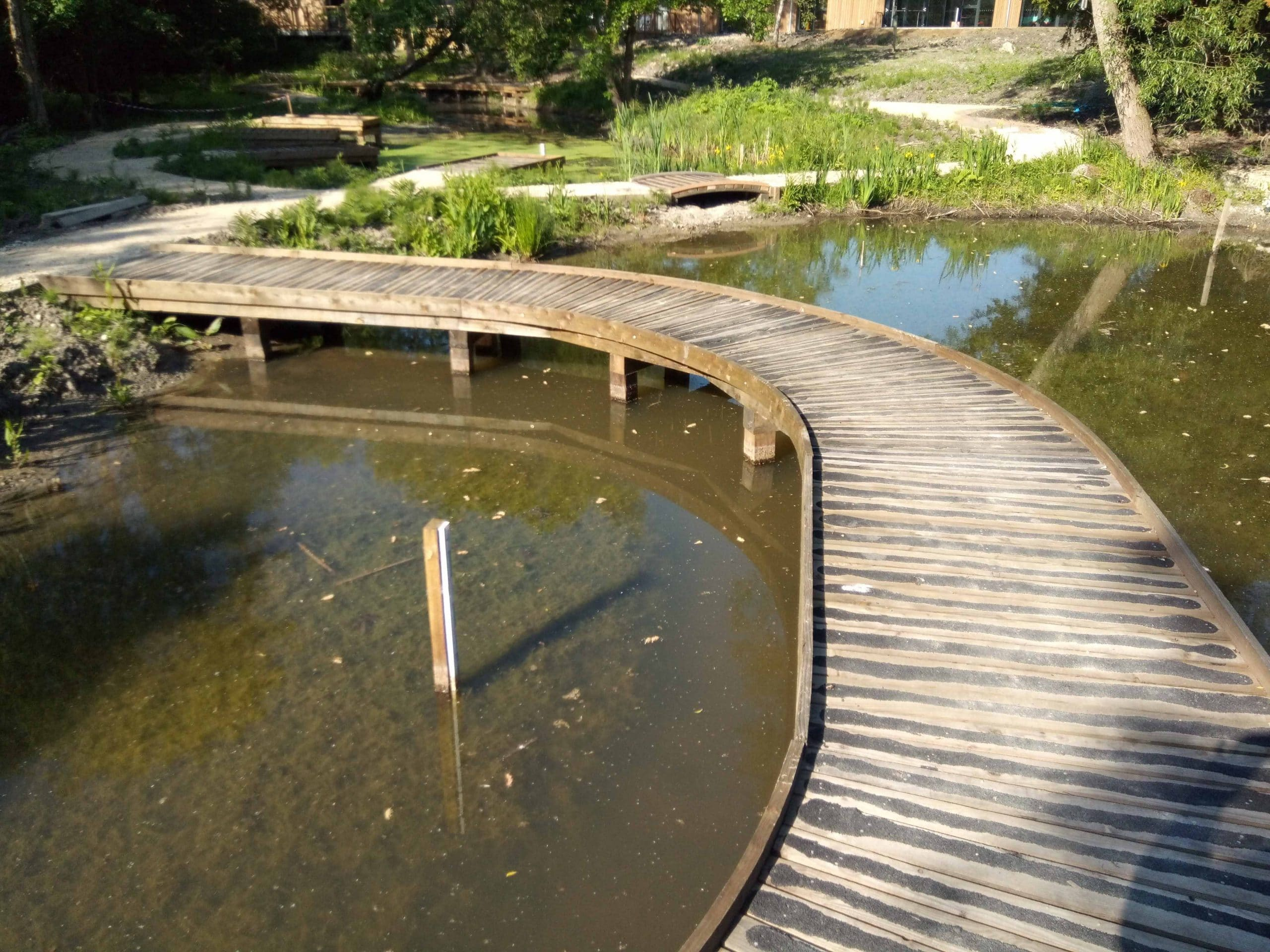 curved wooden walkway over a pond