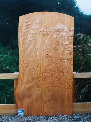 Wooden information board etched with water birds and dargonfly