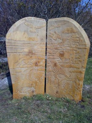 wooden boards engraved with Isles of Scilly wildlife